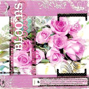 Bloomsfinal_1